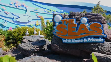 curto : Orlando, Florida. May 24, 2019. Sign The Seas attraction and funny pelicans in Epcot at Walt Disney World Resort area. Stock Footage