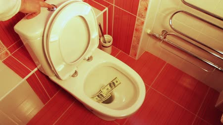 финансы : Money dollars thrown down the toilet