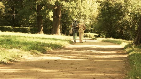 caregiver : Two elderly women walk in the park