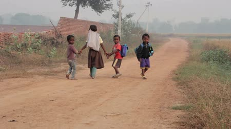 asian and indian ethnicities : Indian children are on a rural road