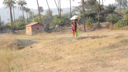 vila : Indian rural woman carries heavy things on her head