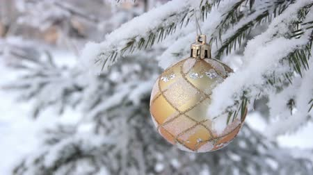 иней : Glass Christmas balls on spruce Стоковые видеозаписи