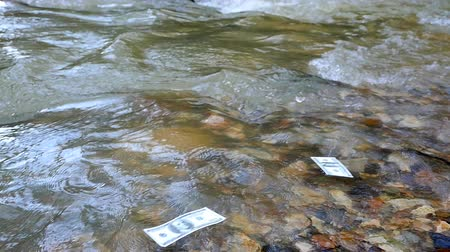 earnings : Money bills floating on the river