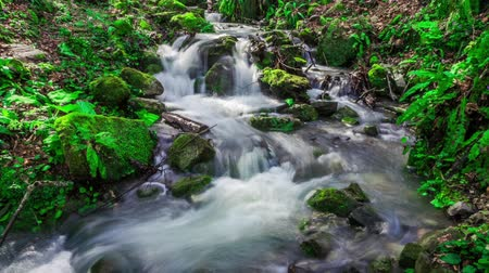 стремнина : Fantastic flow of water of the mountain stream.