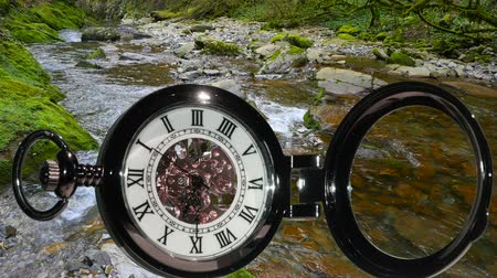 liquid : Pocket watch on water background