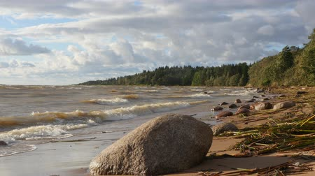 Strong wind on the Baltic sea shore