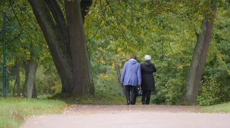 Two elderly women walk in the park