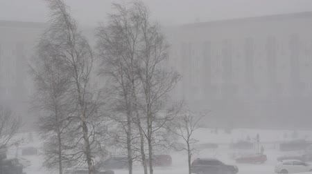nevasca : Heavy snowfall. City street