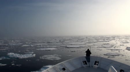 disko : Dawn in the ocean among the icebergs and ice in the Arctic. Fantastic wonderful amazing video grenland nature iceland. Lovely shooting the life of nature, seaside and mountains. Global warming. Stock Footage