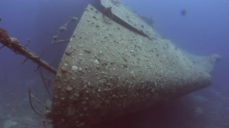 salem express : Shipwrecks Salem Express shipwrecks underwater in the Red Sea in Egypt. Extreme tourism on the ocean floor in the world of coral reefs, fish, sharks. Researchers of wildlife blue abyss. Deep diving.