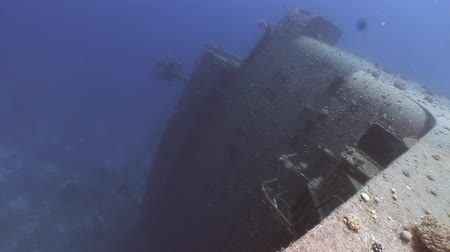 salem express : Salem Express shipwrecks underwater close up in the Red Sea in Egypt Extreme tourism on the ocean floor in the world of coral reefs, fish, sharks. Researchers of wildlife blue abyss. Deep diving.