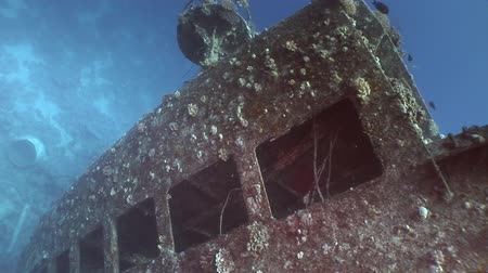 salem express : Window close up in Salem Express shipwrecks underwater in the Red Sea in Egypt. Extreme tourism on the ocean floor in the world of coral reefs, fish, sharks. Researchers of wildlife blue abyss.
