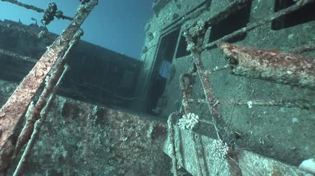 salem express : Salem Express shipwrecks underwater in the Red Sea in Egypt. Extreme tourism on the ocean floor in the world of coral reefs, fish, sharks. Researchers of wildlife blue abyss. Deep diving.