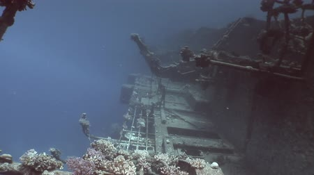 salem express : Salem Express shipwrecks under blue water in the Red Sea in Egypt. Extreme tourism on the ocean floor in the world of coral reefs, fish, sharks. Researchers of wildlife abyss. Deep diving. Stock Footage