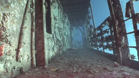 salem express : Deck of ship wrecks Salem Express underwater in the Red Sea in Egypt.Extreme tourism on the ocean floor in the world of coral reefs, fish, sharks. Researchers of wildlife blue abyss. Deep diving.