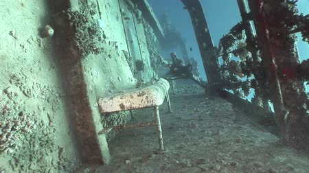 salem express : Deck of ship Salem Express wrecks underwater in Red Sea in Egypt. Extreme tourism on ocean floor in world of coral reefs, fish, sharks. Researchers of wildlife blue abyss. Deep diving.