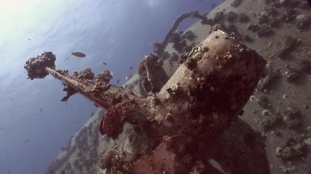 salem express : Screw close up ship wreck Salem Express on seabed underwater in Egypt. Extreme tourism on ocean floor in world of coral reefs, fish, sharks. Researchers of wildlife blue abyss. Deep diving. Stock Footage