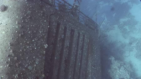 salem express : Salem Express shipwrecks underwater in the Red Sea in Egypt. Extreme tourism on ocean floor in world of coral reefs, fish, sharks. Researchers of wildlife blue abyss. Deep diving. Stock Footage