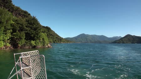 luxo : Green mountains and calm ocean water view from a moving yacht in new Zealand.. Beautiful background of amazing nature. Travel and tourism in the world of wildlife. Stock Footage
