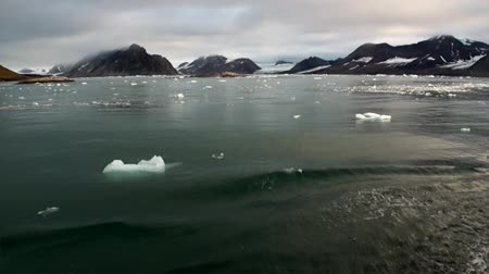 ártico : Glacier on the coast in the background of water of Arctic Ocean in Svalbard. Wildlife in Nordic badlands. Unique footage on background natural landscape and snow of Spitsbergen.
