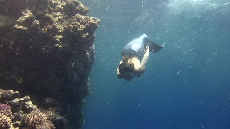 sereia : Underwater model free diver swims in clean transparent blue water in Red Sea. Young girl smiling at camera. Filming a movie in marine landscape, coral reefs, ocean inhabitants. Stock Footage