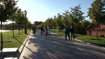 geniş açılı : Moscow, Russia - 25 July 2017: People go across bridge in park in summer. Beautiful views of nature in big city. Family holiday weekend. Stok Video