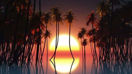 paraíso : rising sun and palms at ocean
