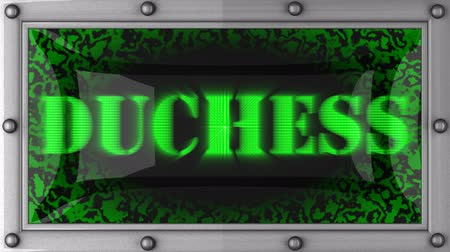 duchessa : annuncio duchessa sul display a LED Filmati Stock