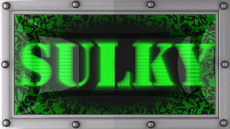 sulky : sulky  announcement on the LED display