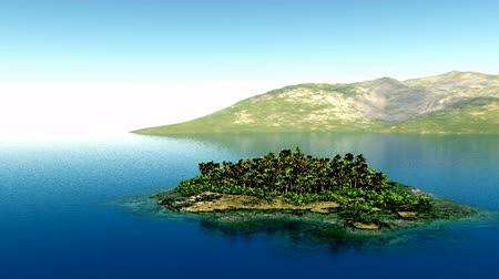 oceânico : aerial fly shot of beautiful island with a palm tree at ocean