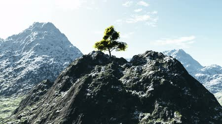 peak : Aerial shot of mountain peak with tree
