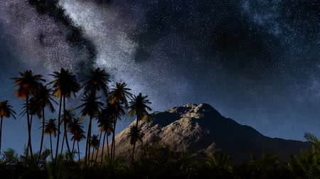 uzun : Colorful milky way and tropical landscape with palms. Timelapse