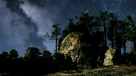 astroloji : 4K TIme Lapse of Stars and Silhouetted Pine Trees Stok Video