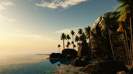 ladigue : beach seascape view with a big stones and palmtree at sunset Stock Footage