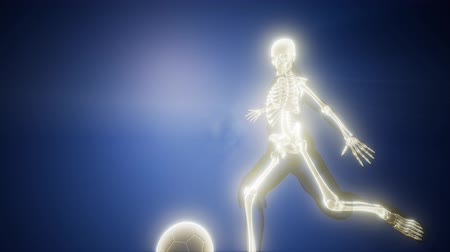 radiografia : soccer player with visible bones Wideo