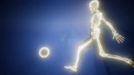 radiologia : soccer player with visible bones Vídeos
