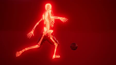 soccer player with visible bones Medical Scan