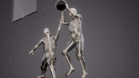 costela : basketball game players with visible bones
