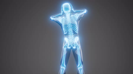 human skeleton radiography medical scan Stock Footage