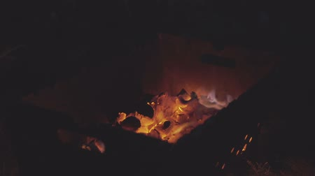 şenlik ateşi : Campfire on a summer night, close up.
