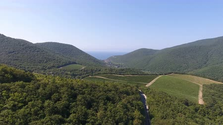 Caucasian vineyards in Abrau-Dyurso, Russia. from the height of bird flight