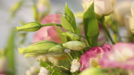 orquídeas : Festive flower decoration in home Stock Footage