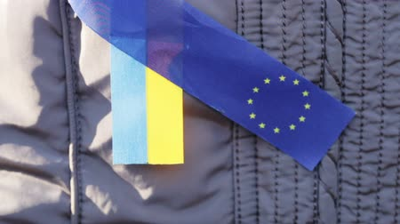 yaşama gücü : Demonstrator with ribbons EU and Ukraine