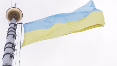 Украина : Tapered flagpole at City Hall in Lviv with flag of Ukraine Стоковые видеозаписи
