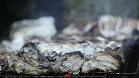 gourmet : Cooking fish and chicken on a barbecue outdoors