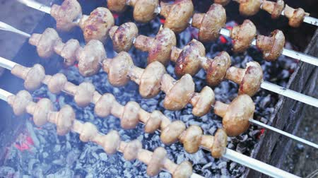 cielęcina : In grill on fire champignons Wideo