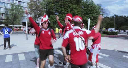 crowd together : Football fans of France Stock Footage