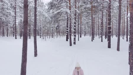 záběry : Walking through the winter forest, woman walks through the forest among the big snowdrifts, enjoying the wild nature and fresh air, aerial shot
