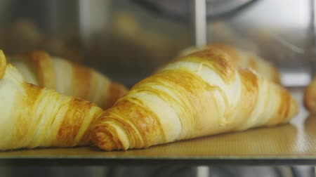 хлеб : Typical process of baking appetizing crispy croissants in oven. TIMELAPSE. Close up