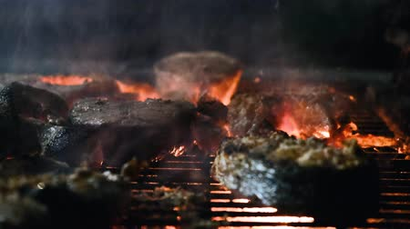 muszla : Close up BBQ fish. The process of making fish steaks. Wideo